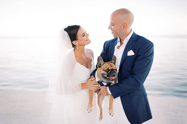 Kendall, Greg, and the cutest Nacho we've ever seen!  Hair & Makeup by AMORA  Www.amorabeautyandbridal.com . . . . #amorabeautystudio #amorabeauty #amorabridal #destinationwedding #amaracay #amaracayresort #keywestwedding #theknot #stylemepretty