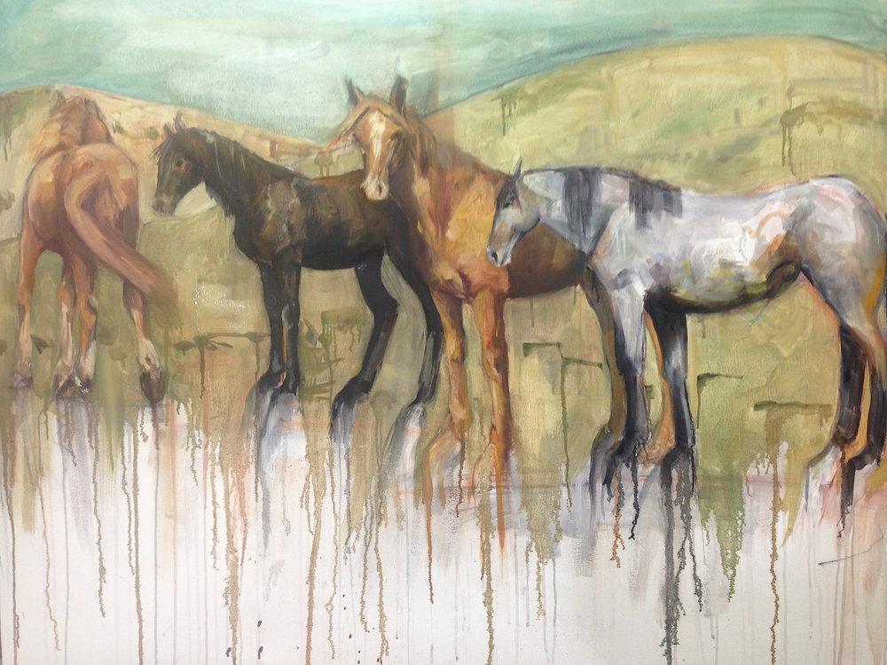 Herd II