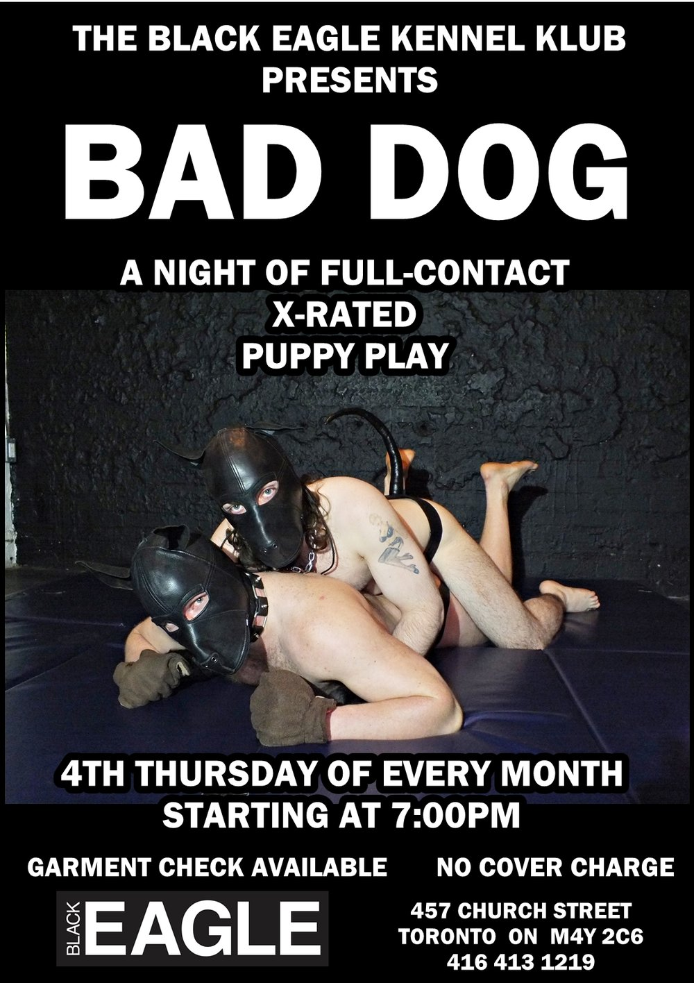 BAD DOG 2.jpg