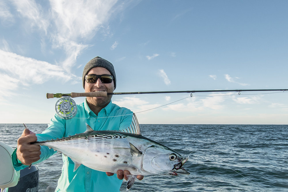 "Catching False Albacore on the fly is the ultimate light tackle inshore fishing. These speedsters are a blast to watch feed and put out blistering runs once hooked up. September and Early October are the best time to hunt ""Fat Alberts"" outside Barnegat inlet."