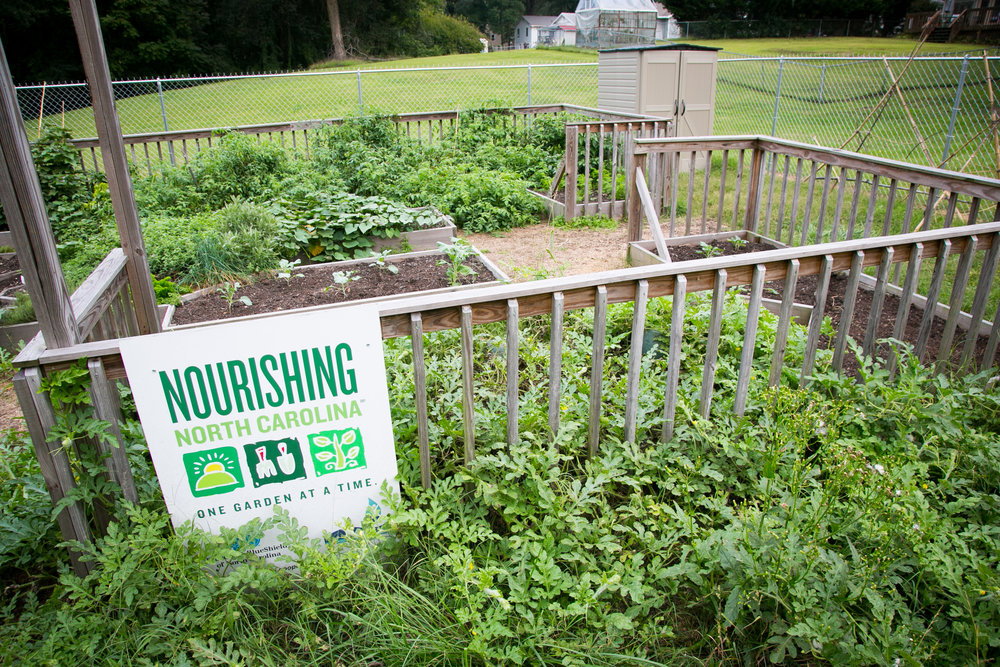 community-garden-4.jpg