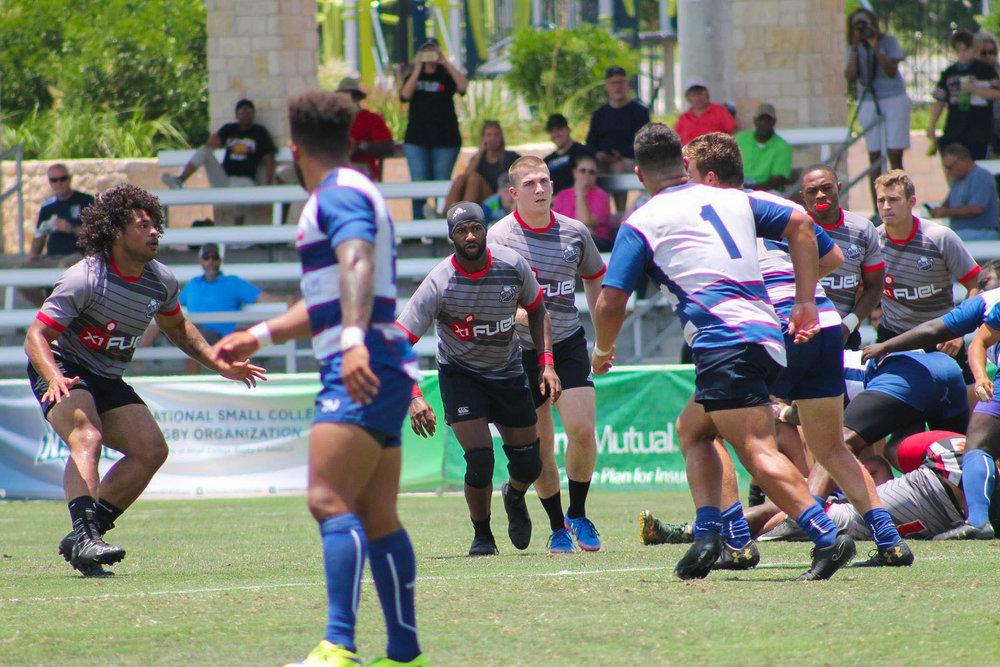 All Star rugby-3-2.jpg