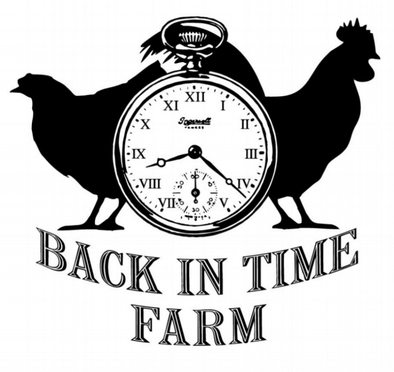BACK IN TIME FARM