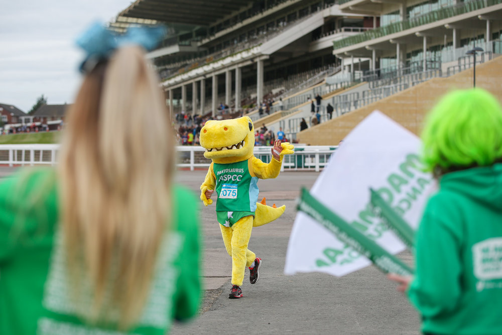 Macmillan-charity-marathon-run-cheltenham-racecourse-september-2018-natalia-smith-photography0267.jpg
