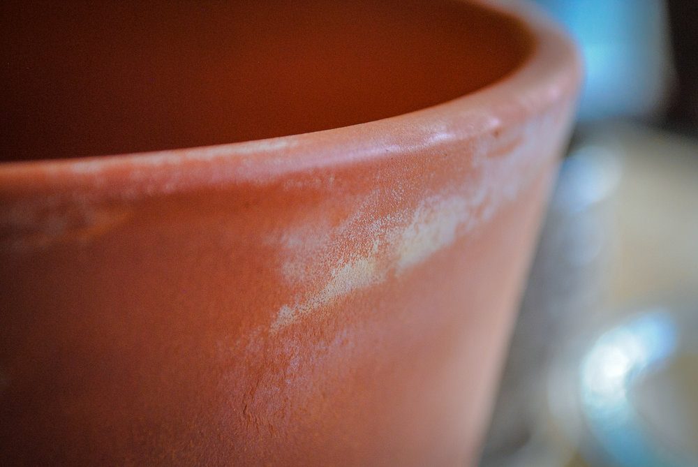 Terra cotta pots are very easy to come by and can be quite a thrifty purchase!