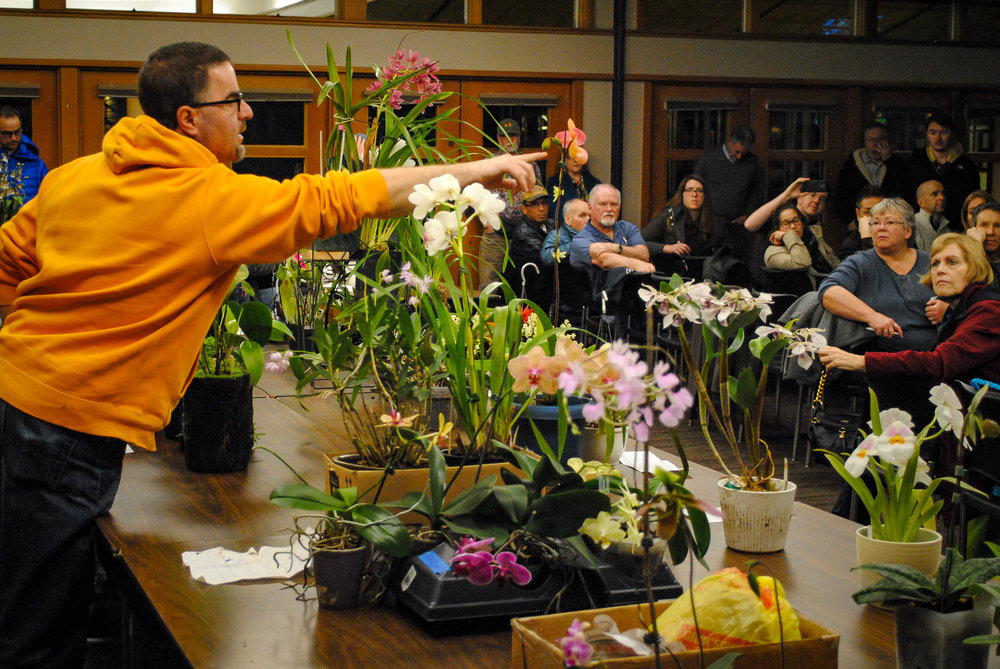 One of our orchid MC's for the evening speaking about each plant on the bloom table!