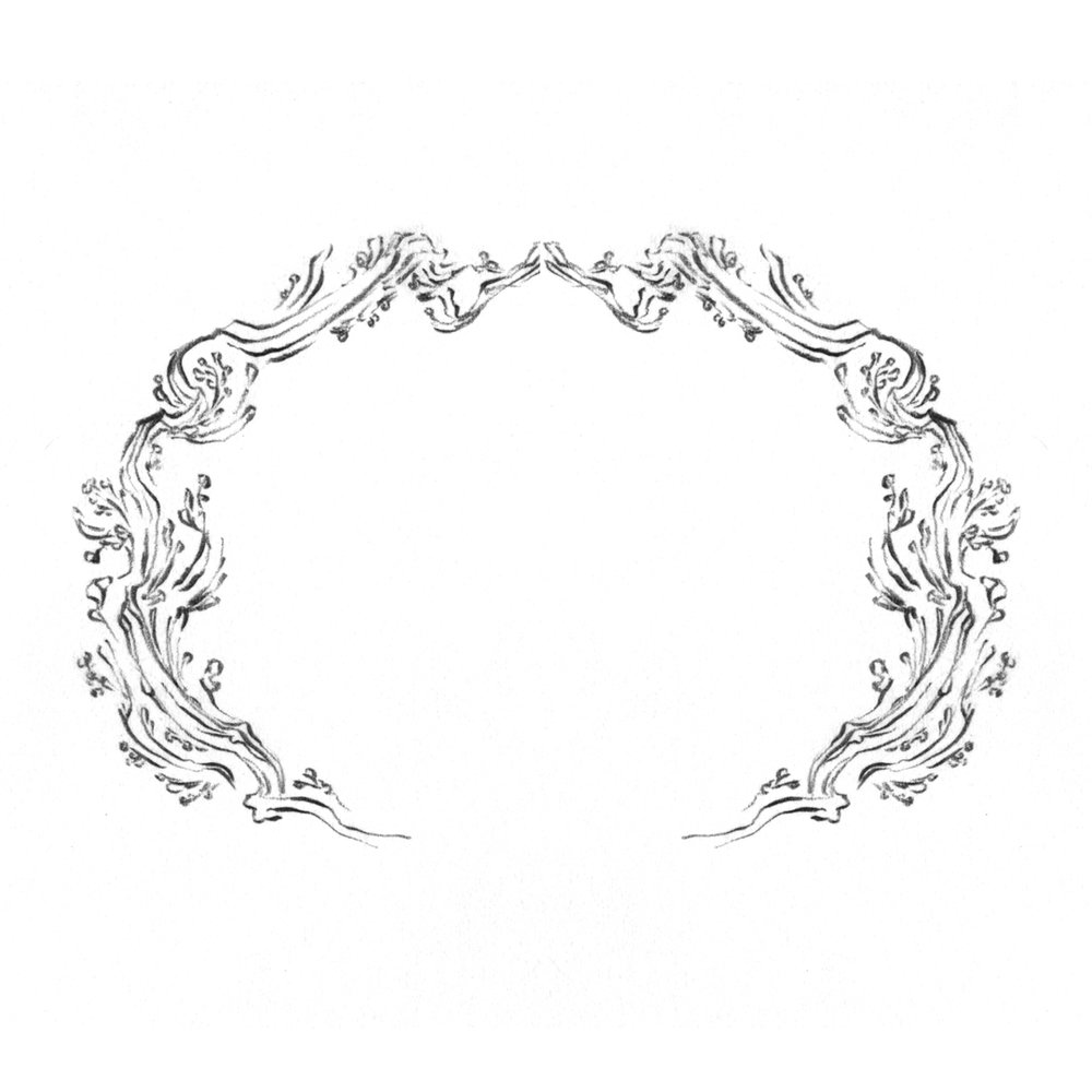 Ornate floral frame design, drawn by Laura Dreyer