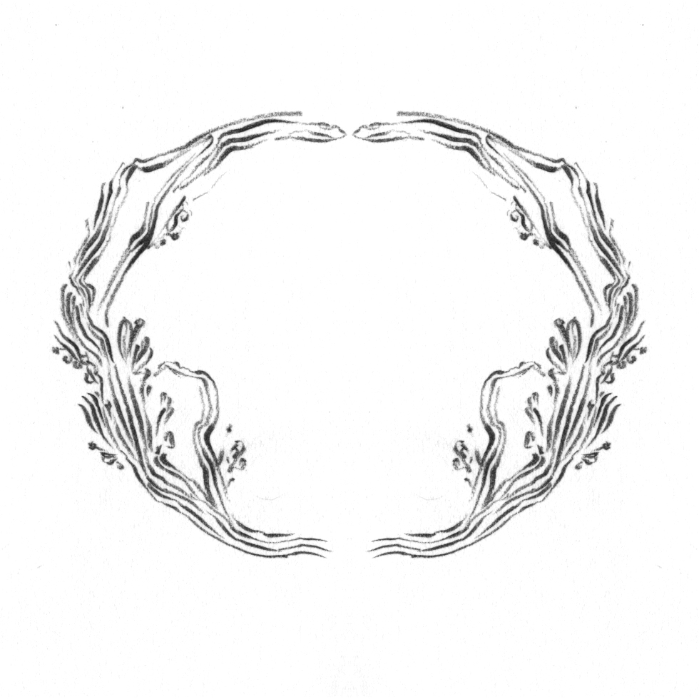 Tree branch border design, drawn by Laura Dreyer