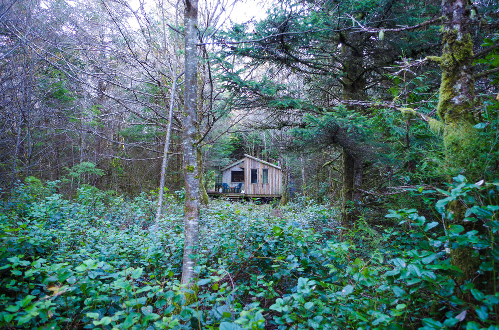 Living at the edge of the world. Tow Hill, Haida Gwaii (Photo Credit: Trina Moyles)
