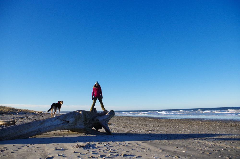 North Beach. (Photo Credit:Eli Niederkorn)