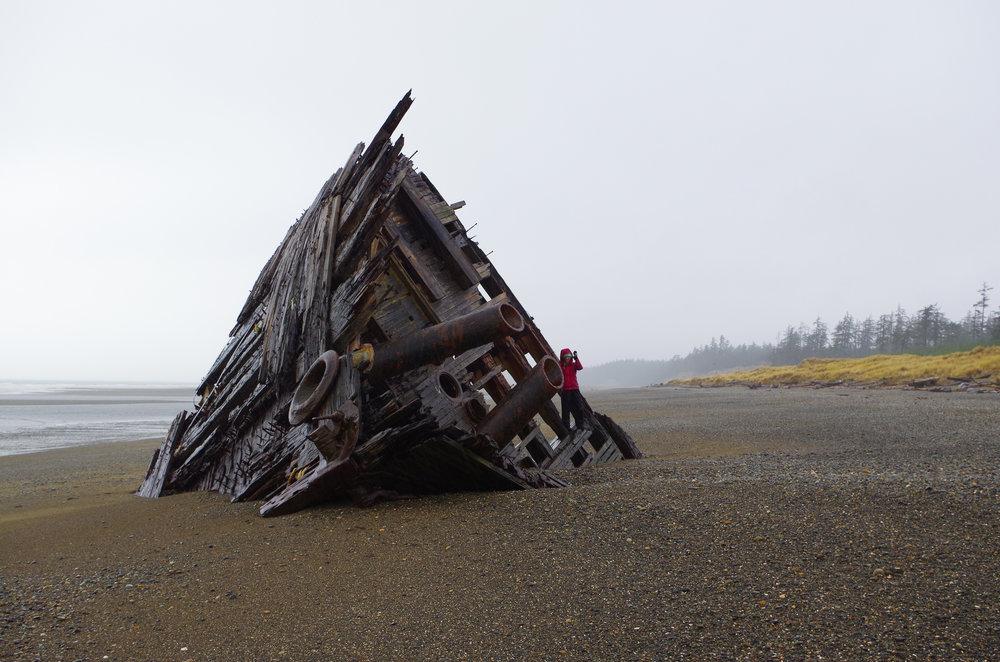 Pesuta Shipwreck. (Photo Credit:Eli Niederkorn)