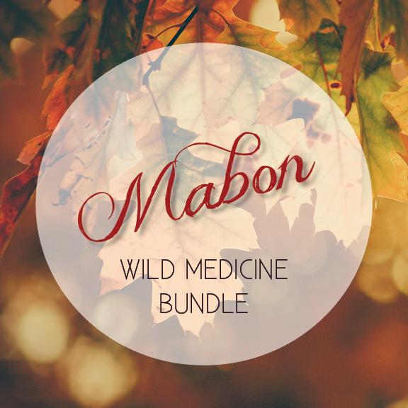 Mabon_Wild_Medicine_Bundle_web_1024x1024@2x.png