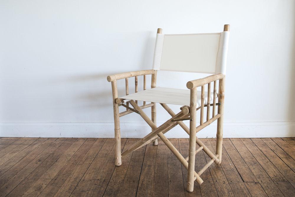 Chair - Director.jpg
