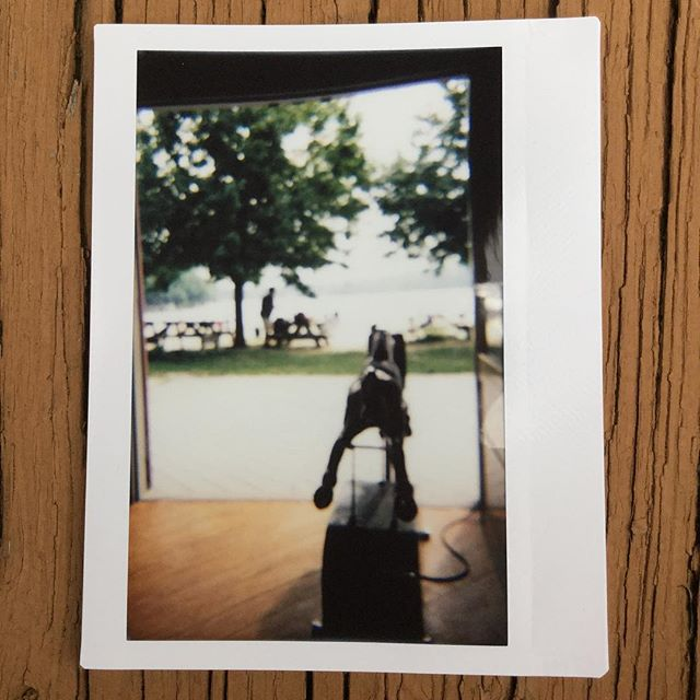 Lone pony  #instax #instaxwide #instantphoto #instantphotography #summer