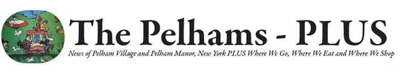 Pelhamite Alessandra Biaggi Challenging State Sen. Jeff Klein for Democratic Nomination - Jan 24, 2018