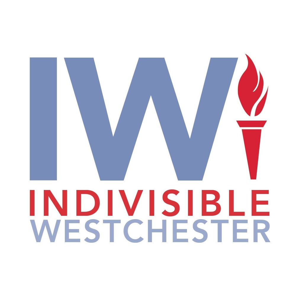 Indivisible Westchester Meeting Interviews - Jan 28, 2018