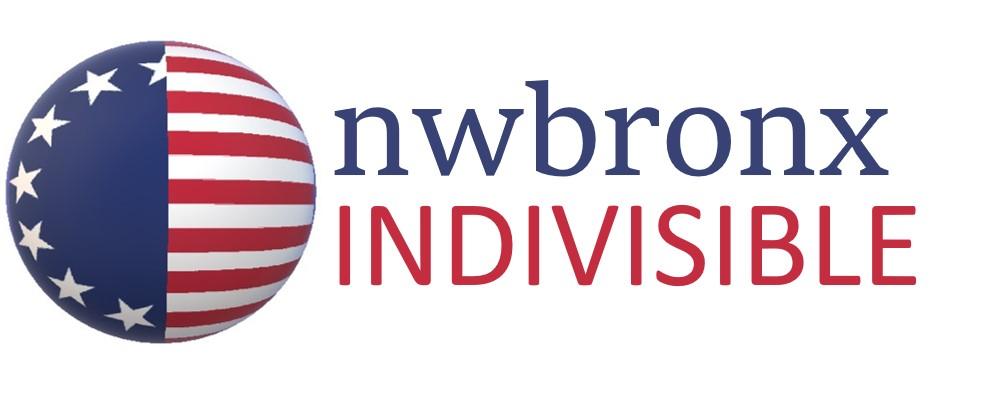 nwbronx indivisible logo.jpg