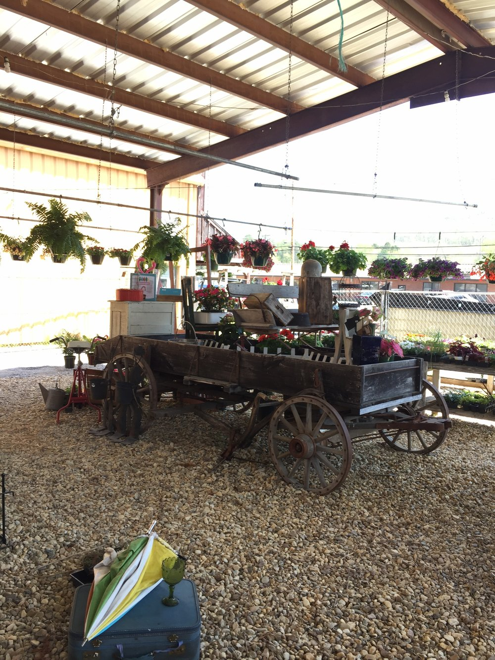 fort payne feed garden.JPG