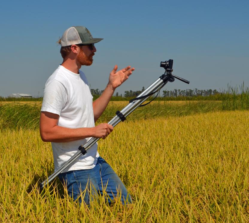 matthew sligar rice farming tv.jpg