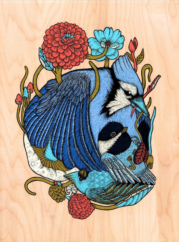 BirdSkull.jpg