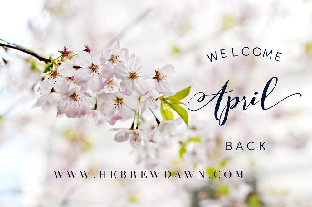 April Showers Bring May Flowers: Friday Fun on HebrewDawn