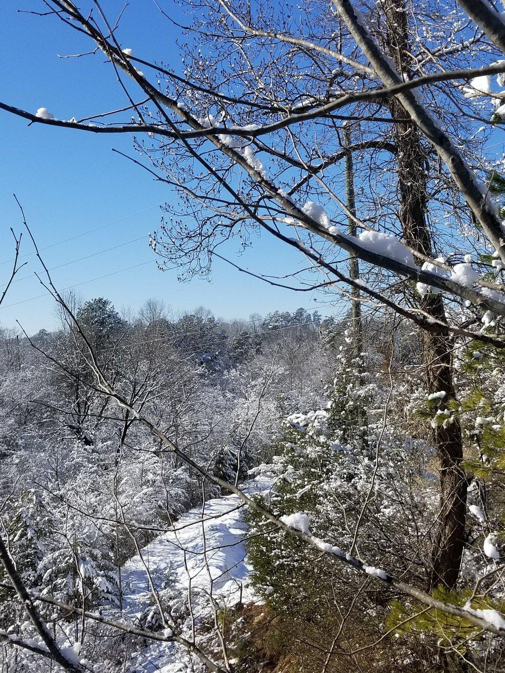 Quarry Vista Duraleigh Road Raleigh, NC
