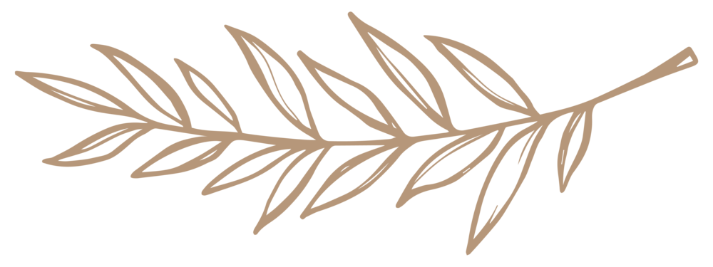 CamelLeaves.png