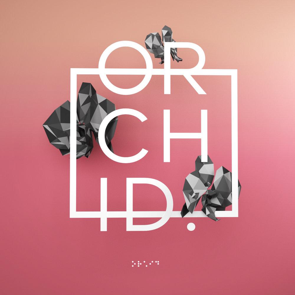 Orchid_01 (0-00-00-00)_1.jpg