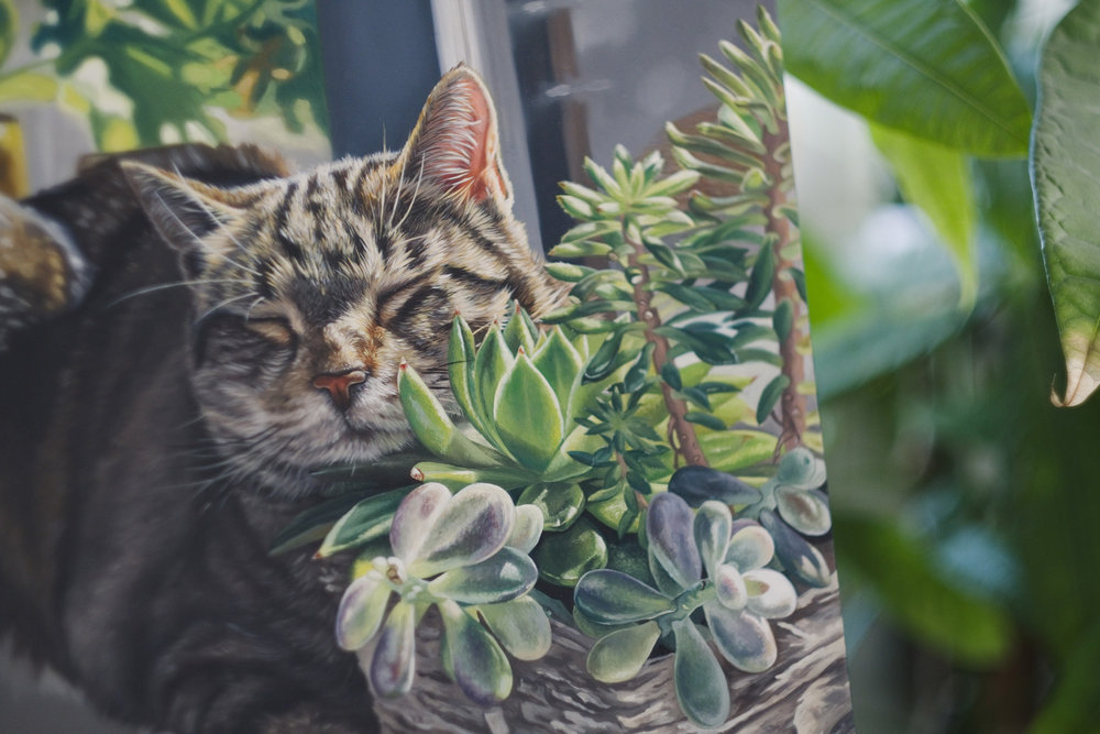 "Photo of ""Duke Dreaming in the Succulents"", oil painting on wood panel."