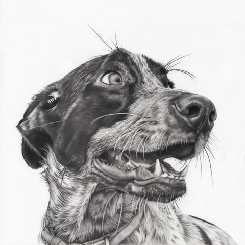"""Gonzo"", finished drawing. Graphite on drafting film. Image courtesy of artist."