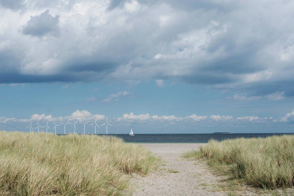 amager-strandpark-(6).jpg