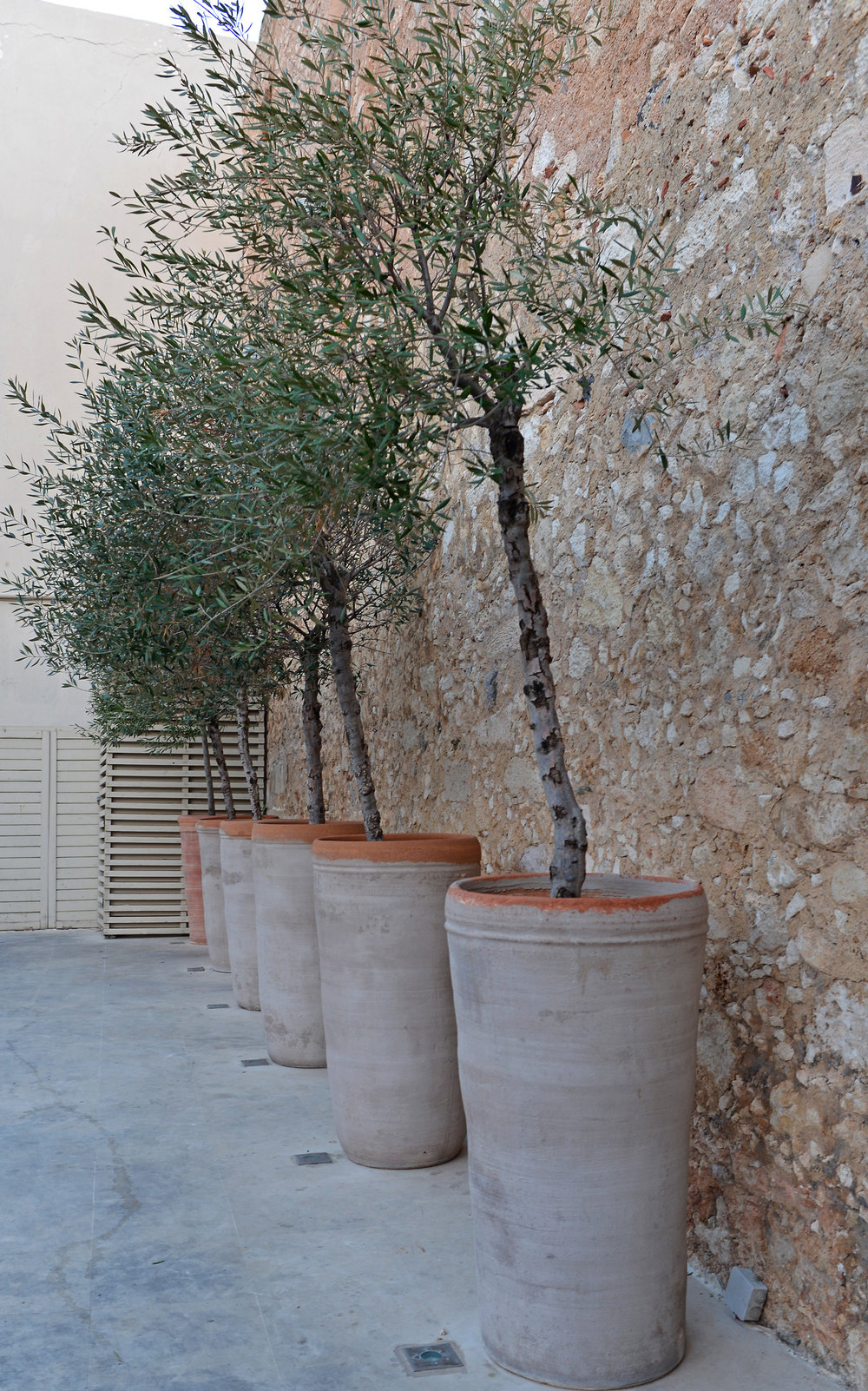 a kreta potteplanter (12).jpg