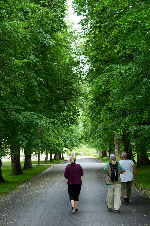 Fritzøe hovedgård Fritzøeskog (9).jpg