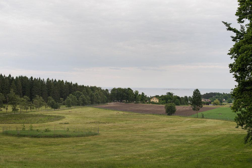 Fritzøe hovedgård Fritzøeskog (5).jpg