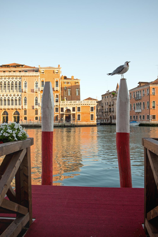 tidlig morgen i Venezias gater og kanaler (13).jpg