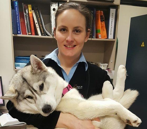 Dr Katelyn Sutcliffe  - Port Adelaide Vet