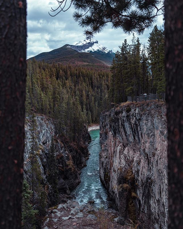 Through the trees and over the mountains - @sunwaptafalls