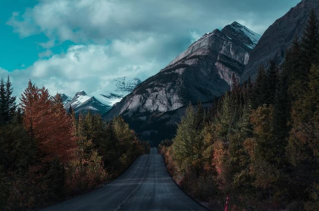 Roads have never looked so good... - 📍Icefields Parkway @banff.national.park - 📸 @sonyalpha
