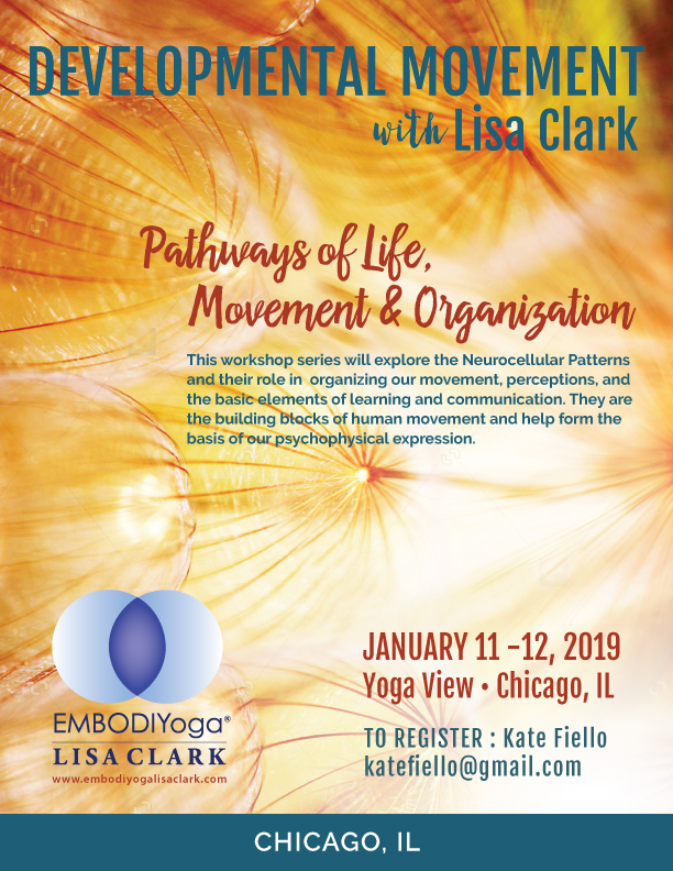 Chicago-Jan-2019-Developmental-Movement-Cover.jpg
