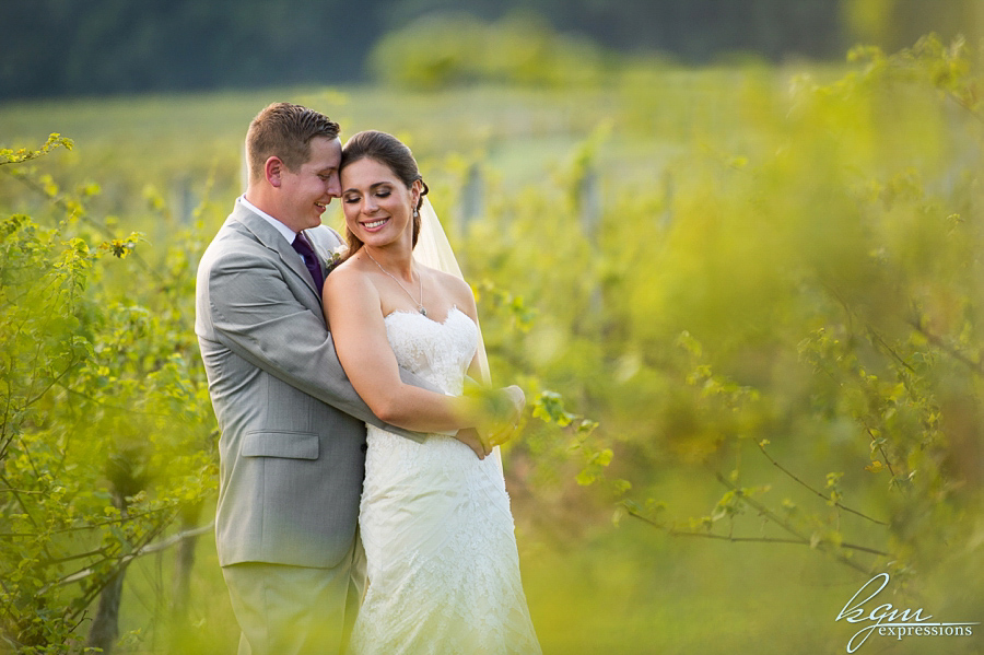 Laurita Winery Wedding