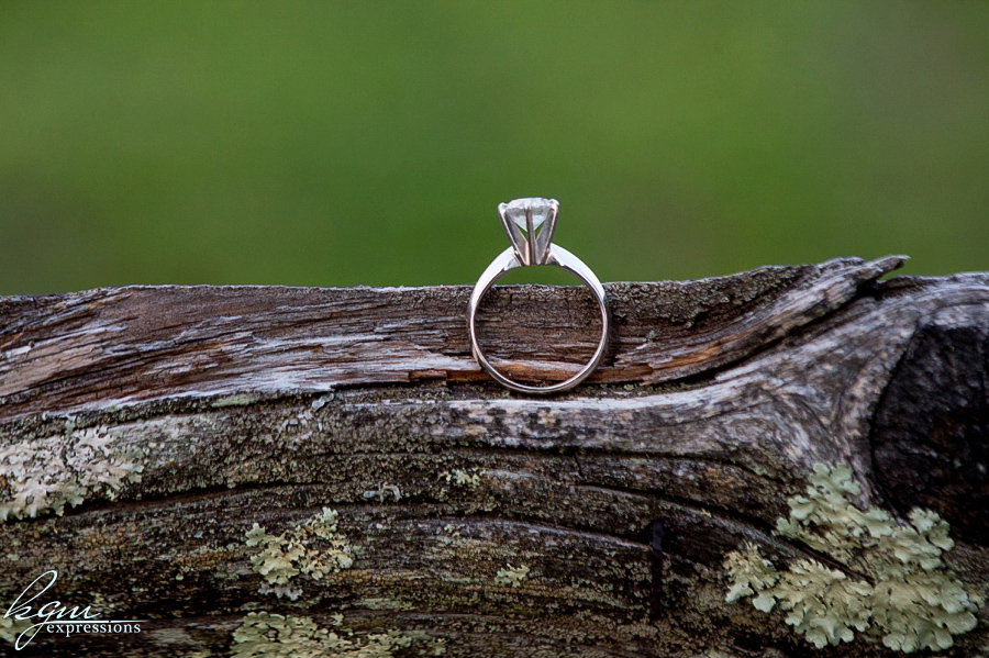 Batsto Engagement
