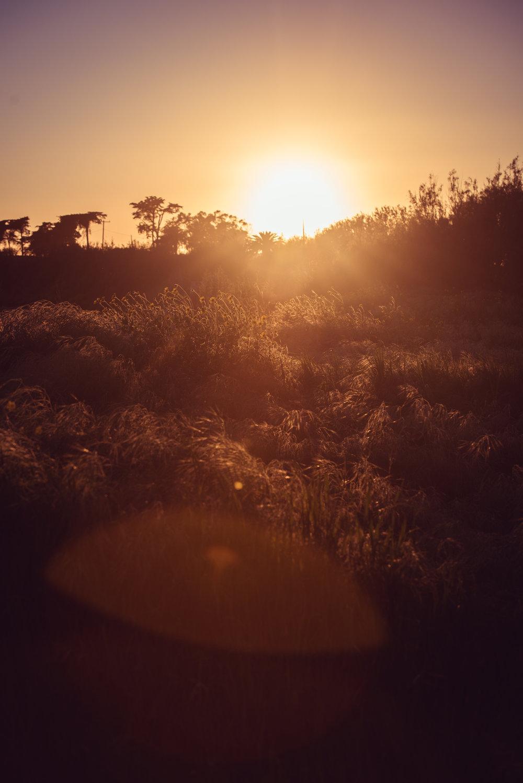 Santa_Barbara_Sunset_Session_renrob©-3.jpg