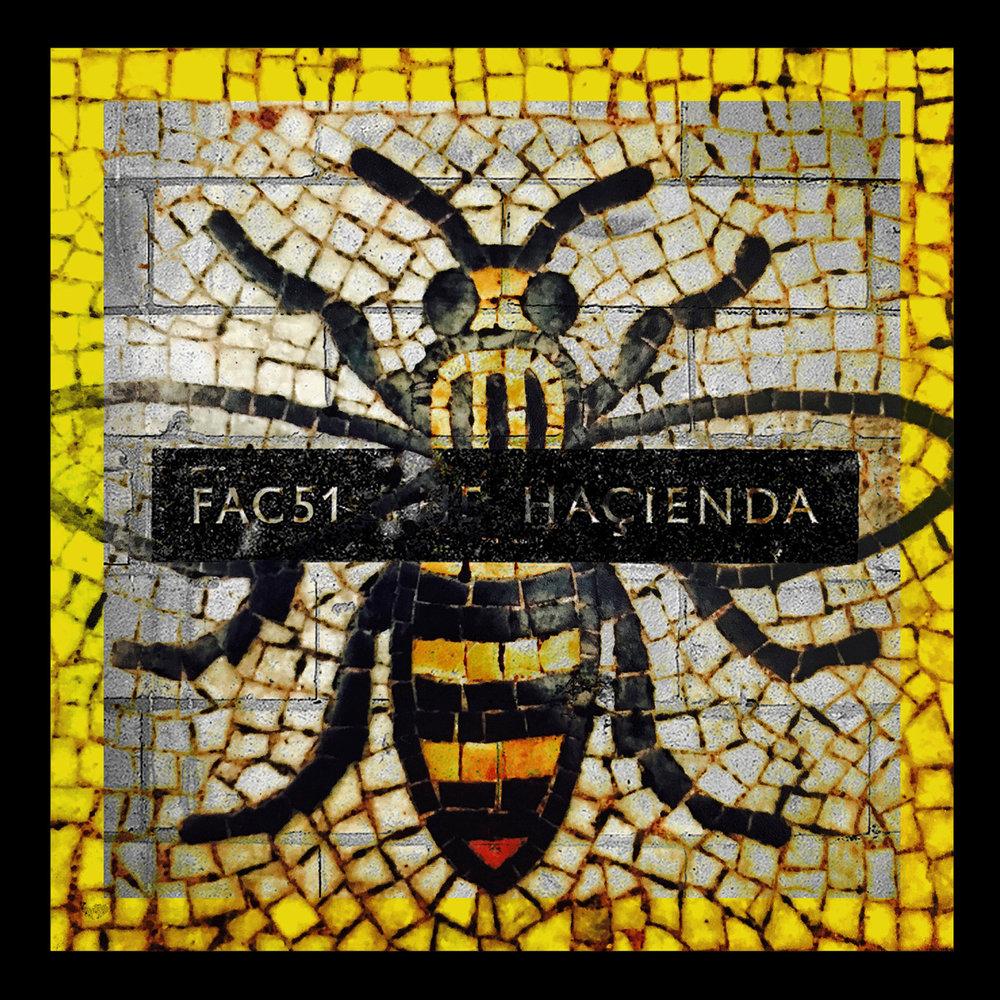 Haciendabees12x12Web.jpg