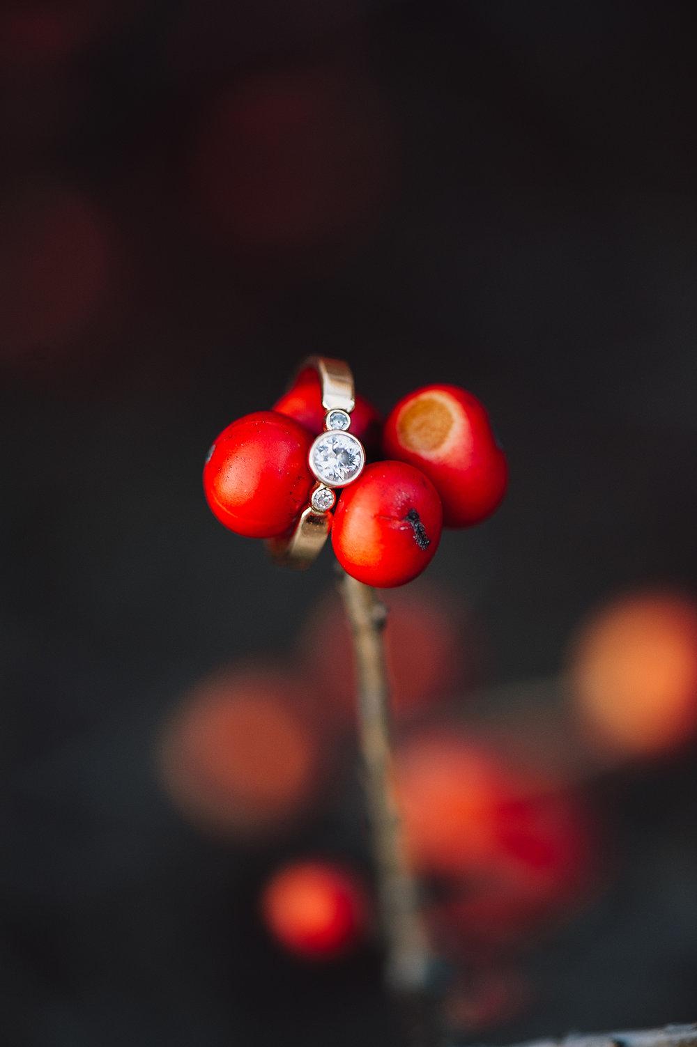 youseephotography_UVA_engagement_aida (20)