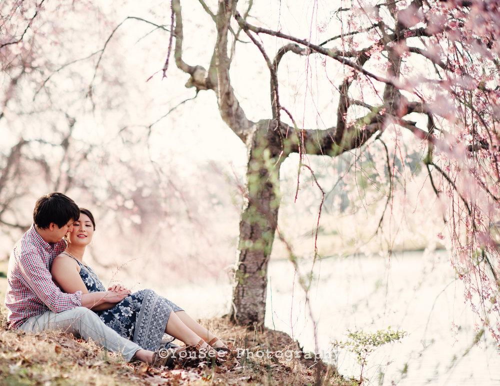 engagement_portrait_cherryblossoms_meadowlark_virginia_fredericksburgweddingphotographer_emily (14)