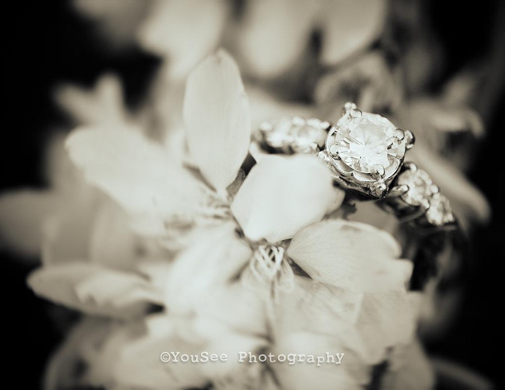 engagement_portrait_cherryblossoms_meadowlark_virginia_fredericksburgweddingphotographer_emily (19)