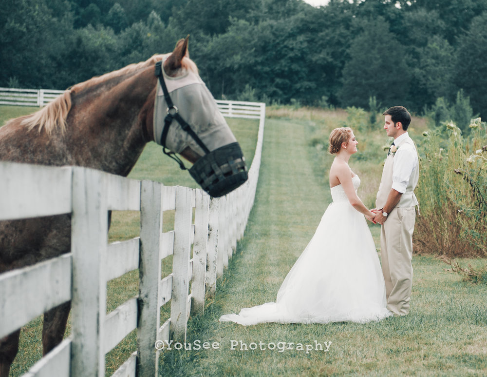 wedding_westwoodfarm_orange_virginia (105)