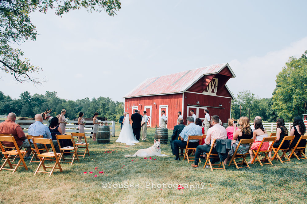 wedding_westwoodfarm_orange_virginia (89)