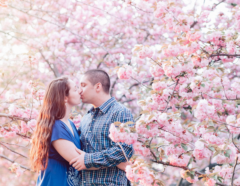 engagement_cherryblossoms_virginiaweddingphotographer_JanieHunter (15).jpg