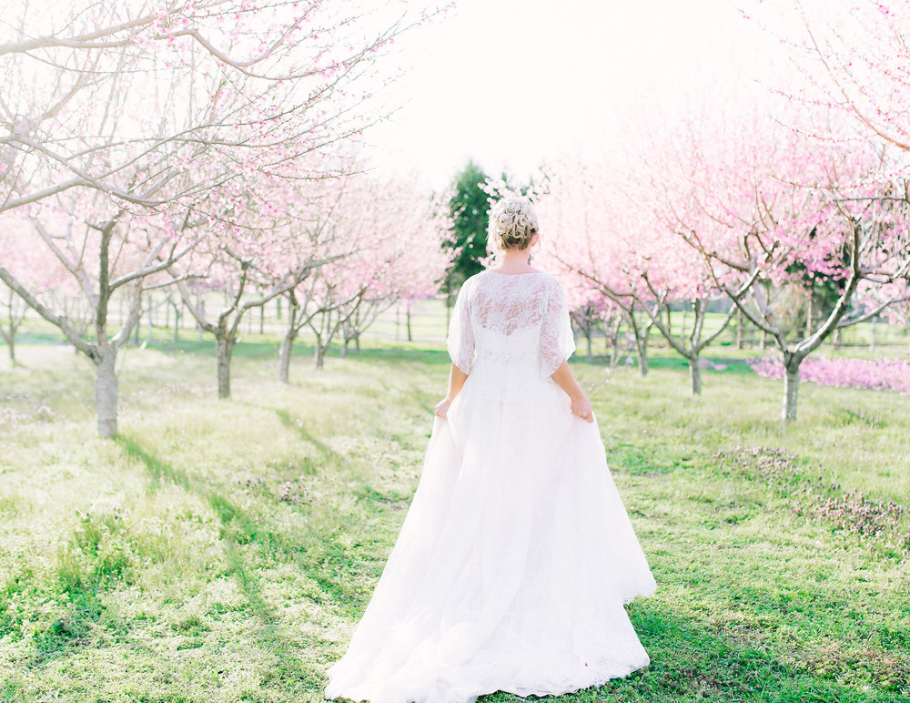 youseephotography_virginia_styledshoot_springwedding_blossoms  (20).jpg